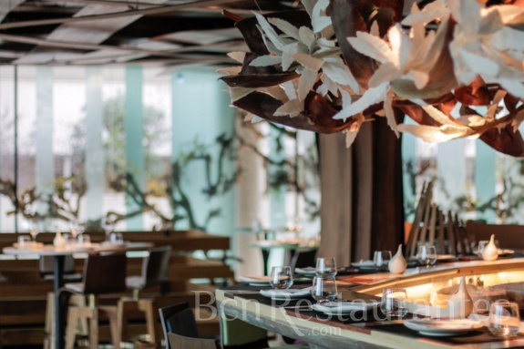 Restaurante Ikibana Sarri Barcelona Tel 933800885